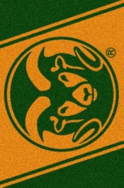 Colorado State Rams Spirit